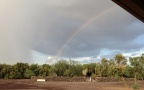 The South Ranch, gold at the end of the rainbow.